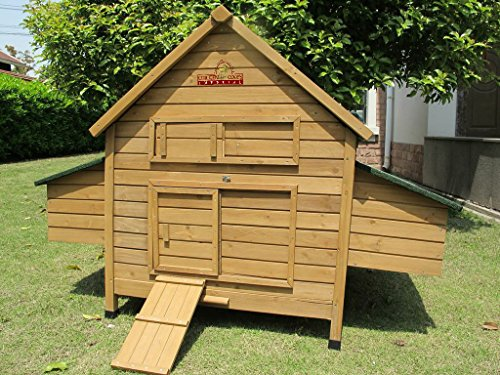 chicken coops imperial grand poulailler savoy marlborough ce poulailler accueille 6 8. Black Bedroom Furniture Sets. Home Design Ideas